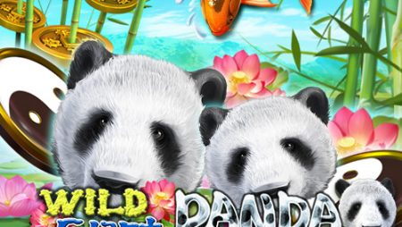 สล็อตแพนด้า Wild Giant Panda
