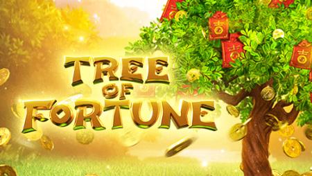 ต้นไม้นำโชค Tree of Fortune
