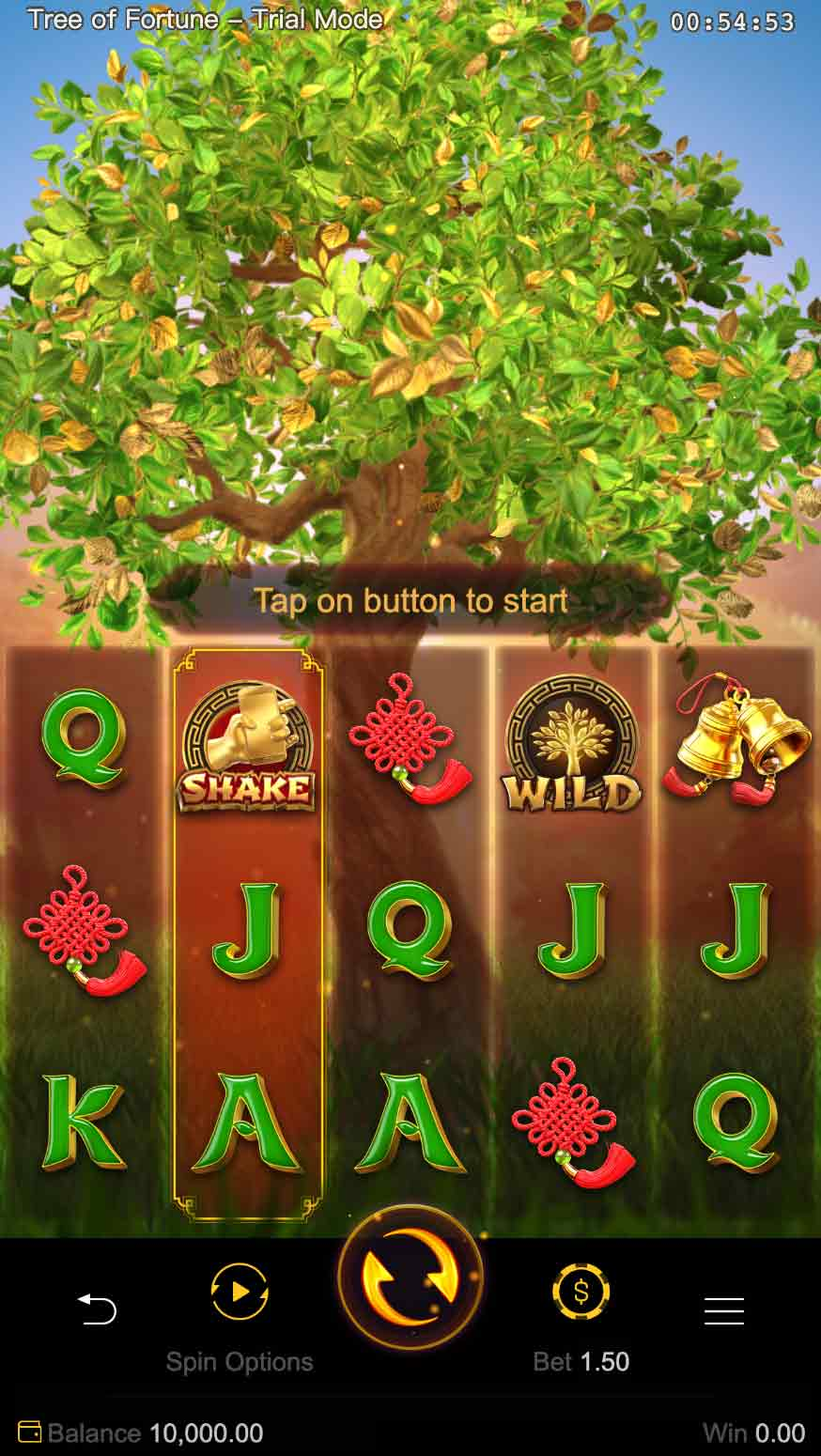 ต้นไม้นำโชค-Tree-of-Fortune-2
